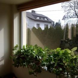 Przeciwsłoneczne folie okienne montaż z roletą